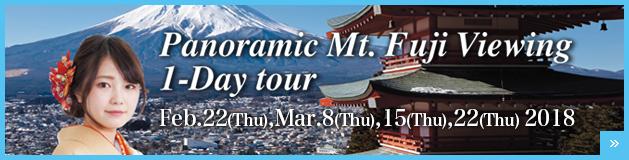 Panoramic Mt.Fuji Viewing 1-Dat tour